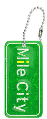 Customized aluminum key chain license plates.